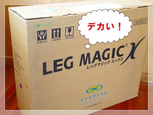 レッグマジックs1.JPG
